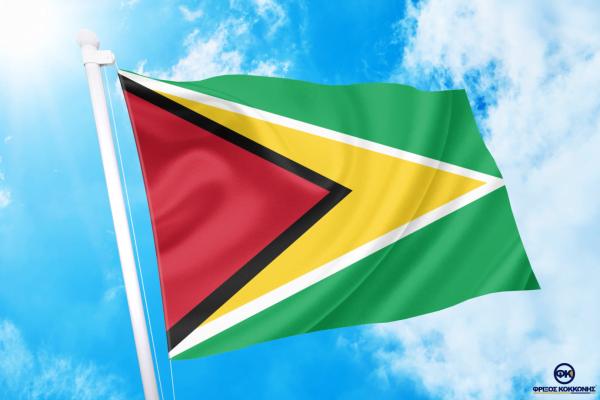 ΑΓΟΡΑ-ΤΙΜΕΣ-ΣΗΜΑΙΕΣ-χωρων -κρατων διαστασεις-ΚΟΚΚΩΝΗΣ--Γουιάνα σημαια κοκκωνης σημαιες guyana flag