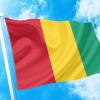 ΑΓΟΡΑ-ΤΙΜΕΣ-ΣΗΜΑΙΕΣ-χωρων -κρατων διαστασεις-ΚΟΚΚΩΝΗΣ--Γουινεα σημαια κοκκωνης σημαιες guinea flag