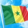 Σημαίες -ΤΙΜΕΣ flags ΑΓΟΡΑ-ΣΗΜΑΙΕΣ-χωρων φρίξος κοκκώνησ -κρατων coconis kokkonis αγορά σημαίας καταστημα με σημαίες διαστασεις-ΚΟΚΚΩΝΗΣ---- Σενεγάλη σημαια κοκκωνης σημαιες senegal flagg